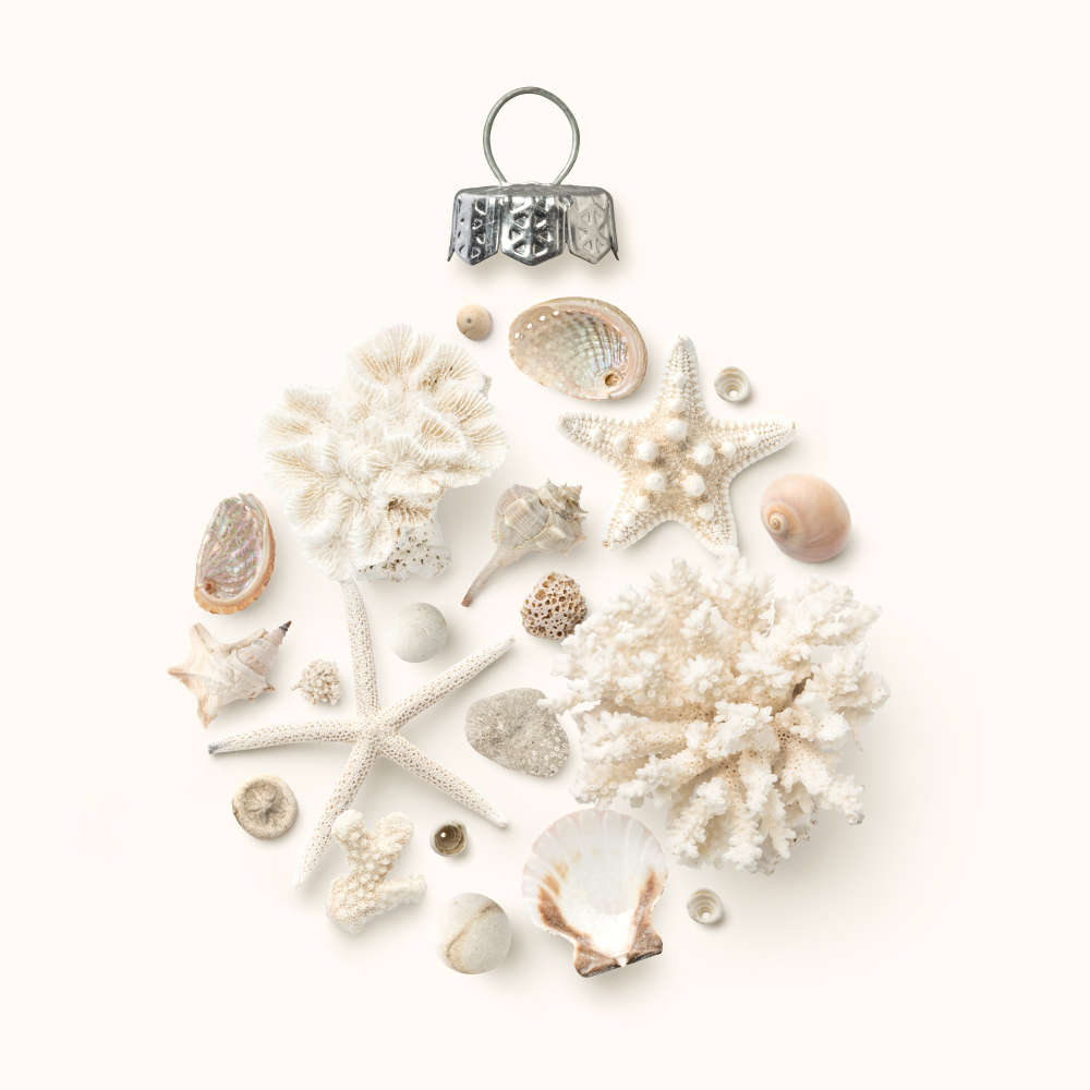 holiday ornament made of shells, starfish and corals on a cream colored background