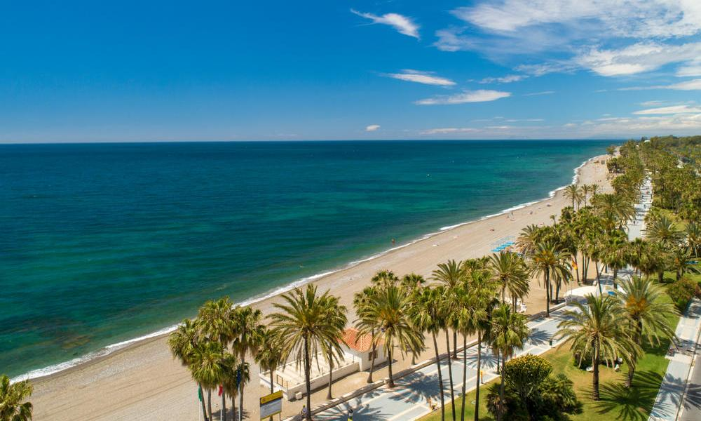 Beach with Palm Trees at Malaga